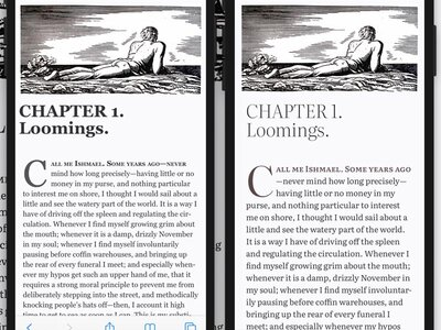 Side-by-side comparison of screens showing Georgia and Literata versions of the book
