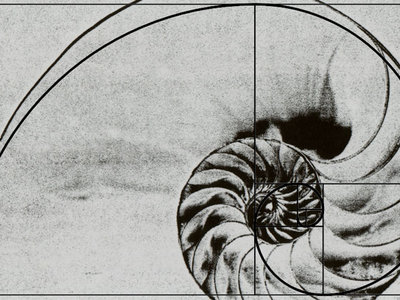 A nautilus shell overlaid with an illustration of the Golden Ratio